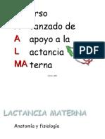 anatomiayfisiologiadelamama-130224193534-phpapp02