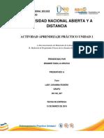 Trabajo Entrenamiento Practico Unidad I Brainer Padilla-2016
