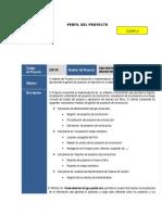 Plantilla_PERFIL del desarrollo  de software