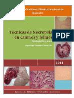 Tecnicas de Necropsia en Caninos y Felinos