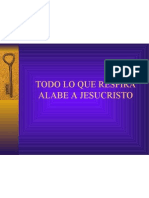 ALERTA----PLANTILLA DE TRANCICION