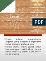 biokim enzim