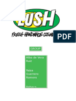 Final project LUSH group 2.docx