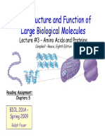 Lecture3-AminoAcidsandProteins[1].pdf