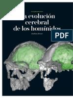 neuropaleontologia