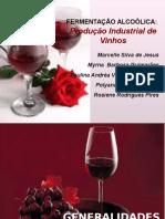 Fermentação Alcoólica - Produção Vinhos
