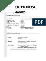 c.v James Tuesta Chavez