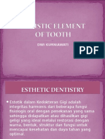 Arthistic Element of Tooth