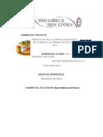 Proyecto Del Coco
