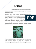 ACUYO.docx