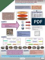 poster-TFG-Katia-Acosta-A0.pdf