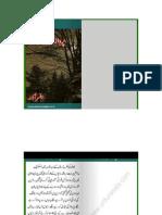 parwaz_e_marg