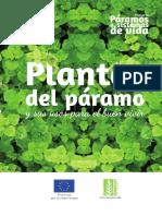 02 Plantas de Paramo