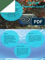 Laboratorio de biologia marina