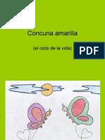 JV Cuncuna Amarilla
