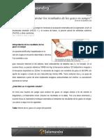 Ok_22_Febrero__13_-_1_Gases_en_la_Sagre.pdf