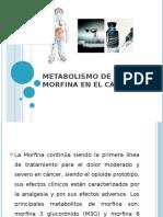 Metabolismo de La Morfina