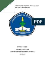 Makalah Kasus Penggusuran Kampung Pulo