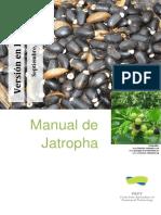 Manual de Jatropha_ Version en Espanol 200 - Ir. Eric Van Der Putten, Ir. Ywe Jan Frank