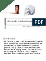 Anatomía y Patologías de La ATM