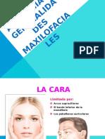 01 - ANATOMIA Y GENERALIDADES MAXILOFACIALES.pptx