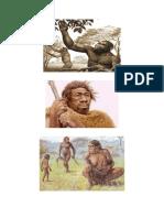 Invest. Historia de La Evolucion