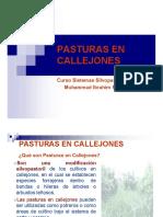 Clase Pasturas en Callejones 2011