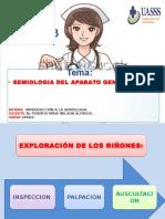 SEMIOLOGIA_GRUPO3genito urinario.pptx