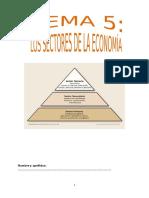 tema 5 SECTORD DE LA ECONOMIA.docx