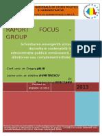 Raport Final Focus Group 2013