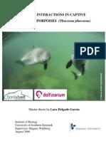Social interactions in captive harbour porpoises (Phocoena phocoena)