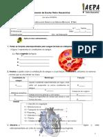 3º Teste CN 6º ano_sistema circulatório + sangue (1) - vasos.doc