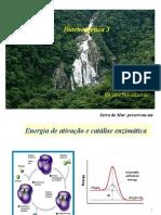 BIOENERGÉTICA (1) - 16 04 - Viviane.ppt