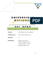 Pulpa Quimica y Semiquimica Del Sambucus Nigra