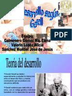 desarrollogesell-090322050712-phpapp01