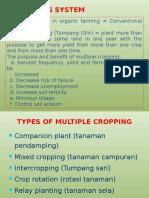 Crop Rotation_revisi Design Ppt(1)