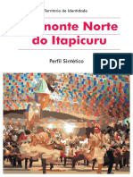 Perfil_Piemonte Norte do Itapicuru.pdf