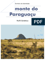 Perfil_Piemonte do Paraguaçu.pdf