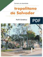 Perfil_Metropolitano de Salvador.pdf