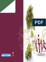Guia de Vinos y Maridajes