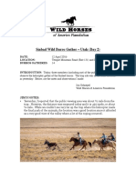 Sinbad Wild Burro Gather (Day 2) PDF.pdf