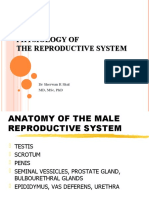 Physiology of the Reproductive System