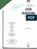 Dario Rodriguez - Gestion Organizacional