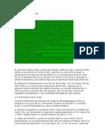 REPRESA GALLITO CIEGO.docx