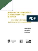 Indicadores Sociodemograficos de Envejecimiento y Vejez
