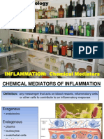 Inflam-L7-2012