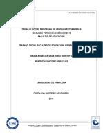 Informe Final Trabajo Social