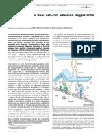 (5)cell adhesion.pdf