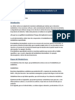 Introducción Al Metabolismo Intermediario I y II