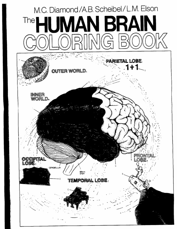 The human brain coloring book diamond - The Human Brain Coloring Book Diamond 6